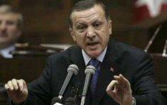20080401 erdogan b