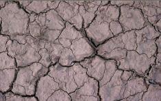 EL CAMBIO CLIMÁTICO TRAERÁ SERIAS CONSECUENCIAS PARA TURQUÍA, SEGÚN UN INFORME