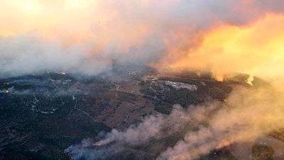 42 muertos por los incendios en Israel