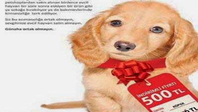 Regalo animales san valentin turquia