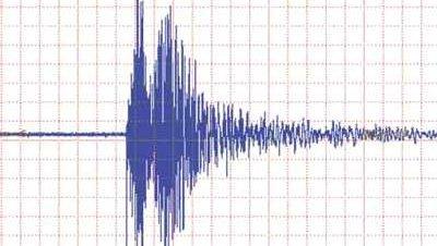 Terremoto seismo grafica 1