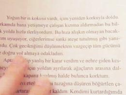 Turco idioma literatura