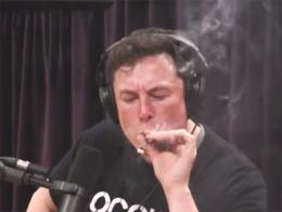 Elon musk fumando marihuana