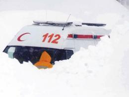 Temporal nevadas