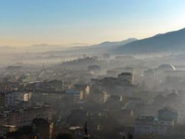 Bursa aire contaminacion