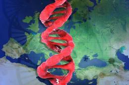 Turquia herencia genetica europa