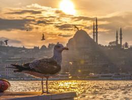 Estambul muelle mezquita turismo