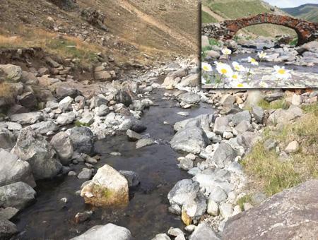 Gumushane puente desaparecido robado