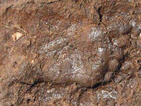 Van huella humana arqueologia
