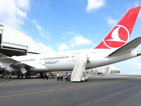 Estambul avion turkish airlines