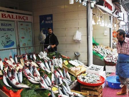 Pescado pescaderia turquia