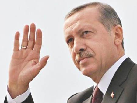 Erdogan(4)