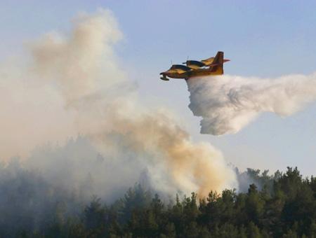Izmir incendio forestal