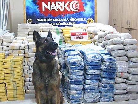 Erzincan perro policia alijo heroina