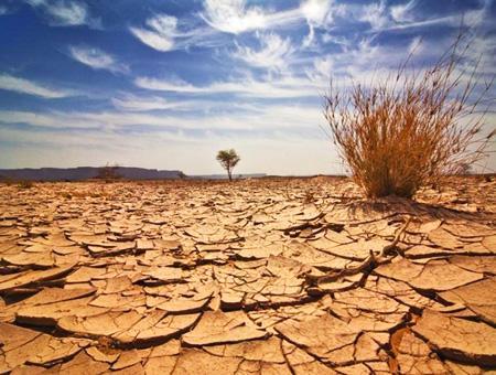 Medioambiente desertificacion cambio climatico