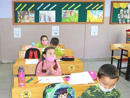 Educacion primaria pandemia
