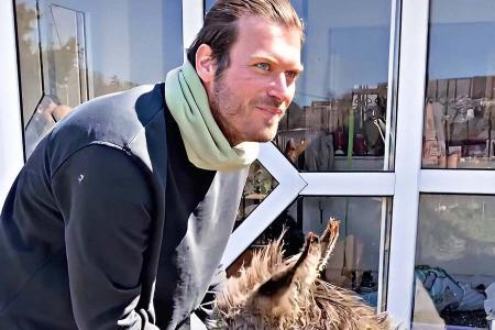 Actor turco kivanc tatlitug adopta animal