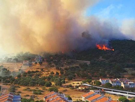 Izmir dikili incendio forestal