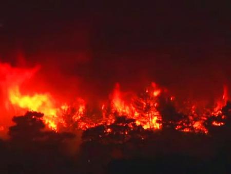Mugla incendios forestales bosque fuego