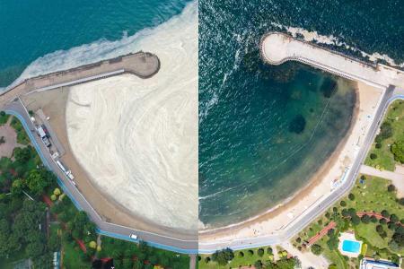 Turquia limpieza mucilago marino